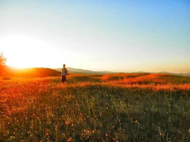 Новите трендови во туризмот и патувањата и туристичкиот потенцијал на Овче Поле и Република Македонија